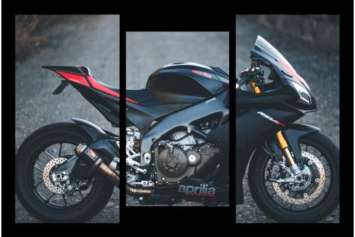 Модульная картина Мотоцикл April